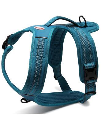 Record Action Alpi Harness Turquoise - bardzo wygodne szelki odblaskowe, turkusowe