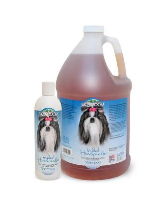 Bio-Groom Wild Honeysuckle Shampoo - szampon oczyszczający i nawilżający szatę oraz łagodzący podrażnienia skóry, koncentrat 1:4