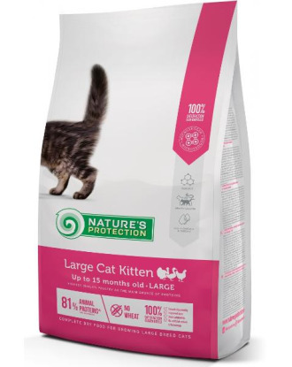 Nature's Protection Care Large Cat Kitten Poultry - Karma dla kociąt ras dużych 2kg