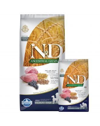 Farmina N&D Ancestral Grain Lamb & Blueberry Adult Medium & Maxi - pełnowartościowa karma dla dorosłych psów średnich i dużych ras, z prazbożami, jagnięciną i borówkami