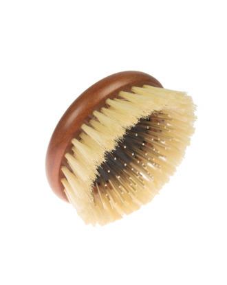 P&W Dog Stylist Brush - mała, okrągła szczotka drewniana z naturalnym włosiem i metalowymi igłami