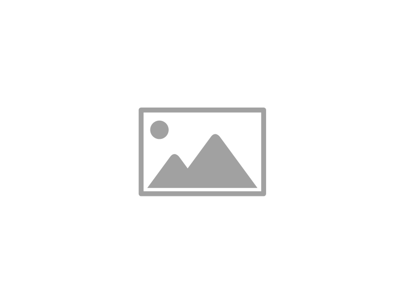Blovi DryBed VetBed A - antypoślizgowe posłanie, legowisko dla zwierząt, szare w białe gwiazdki